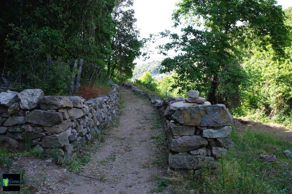 Le sentier des moulins