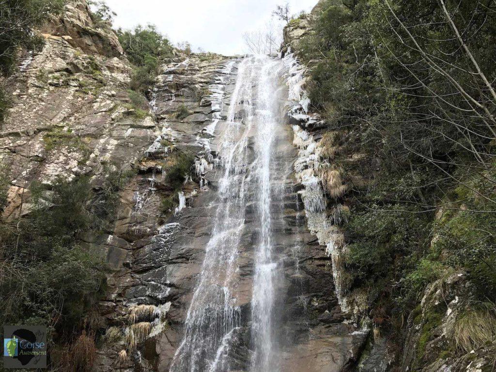 cascade carnavale
