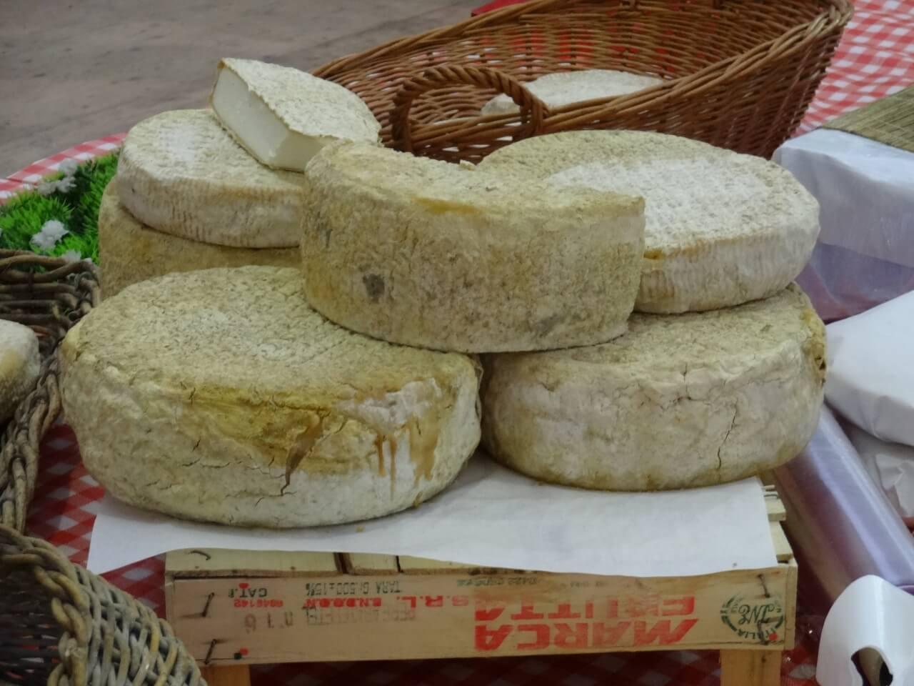 foire du fromage de corse à Venaco