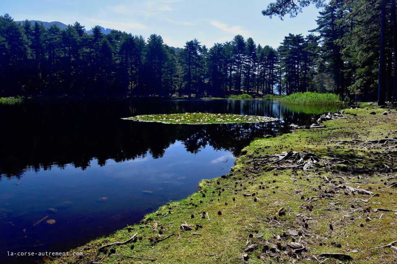 lac de creno
