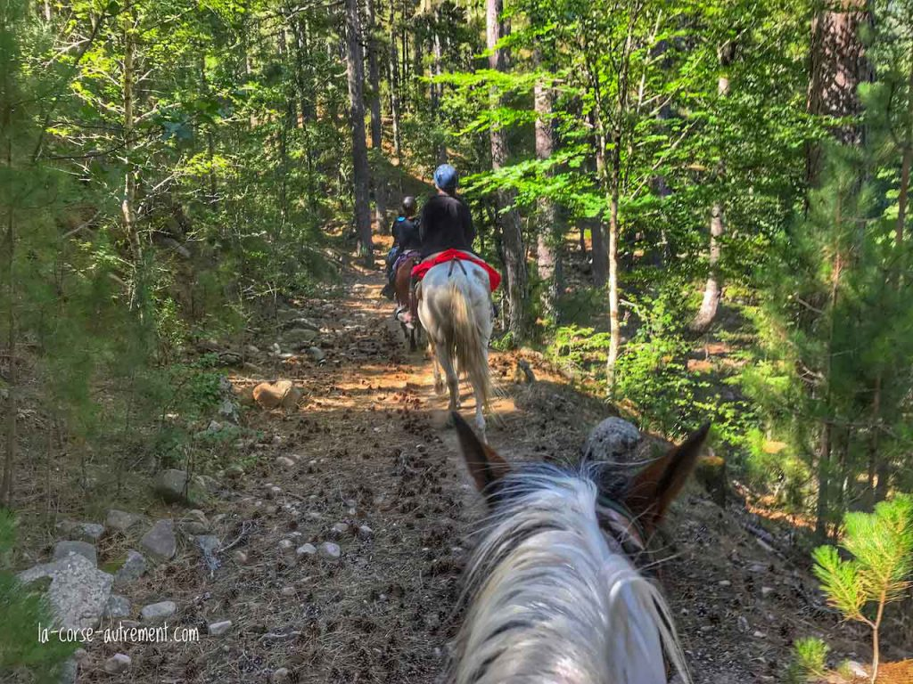 ranch u niolu a cavallu