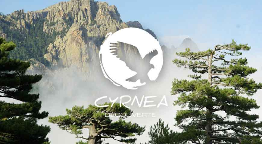cyrnea decouverte