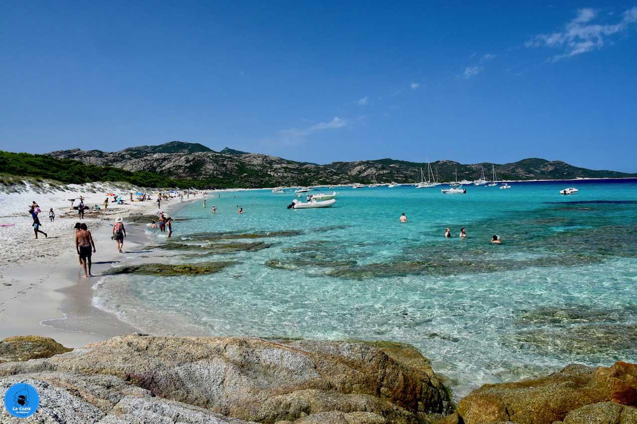 plage de Saleccia