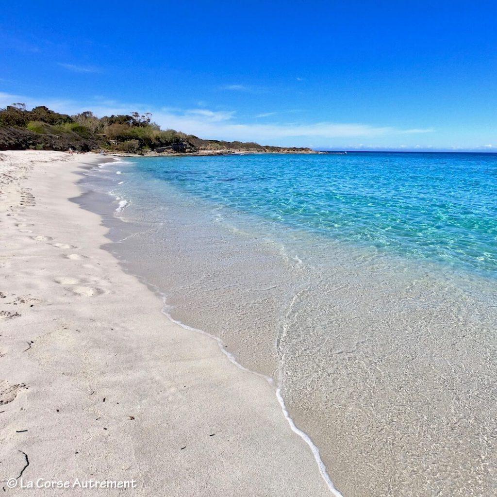La plage de Ghjunchitu en Corse