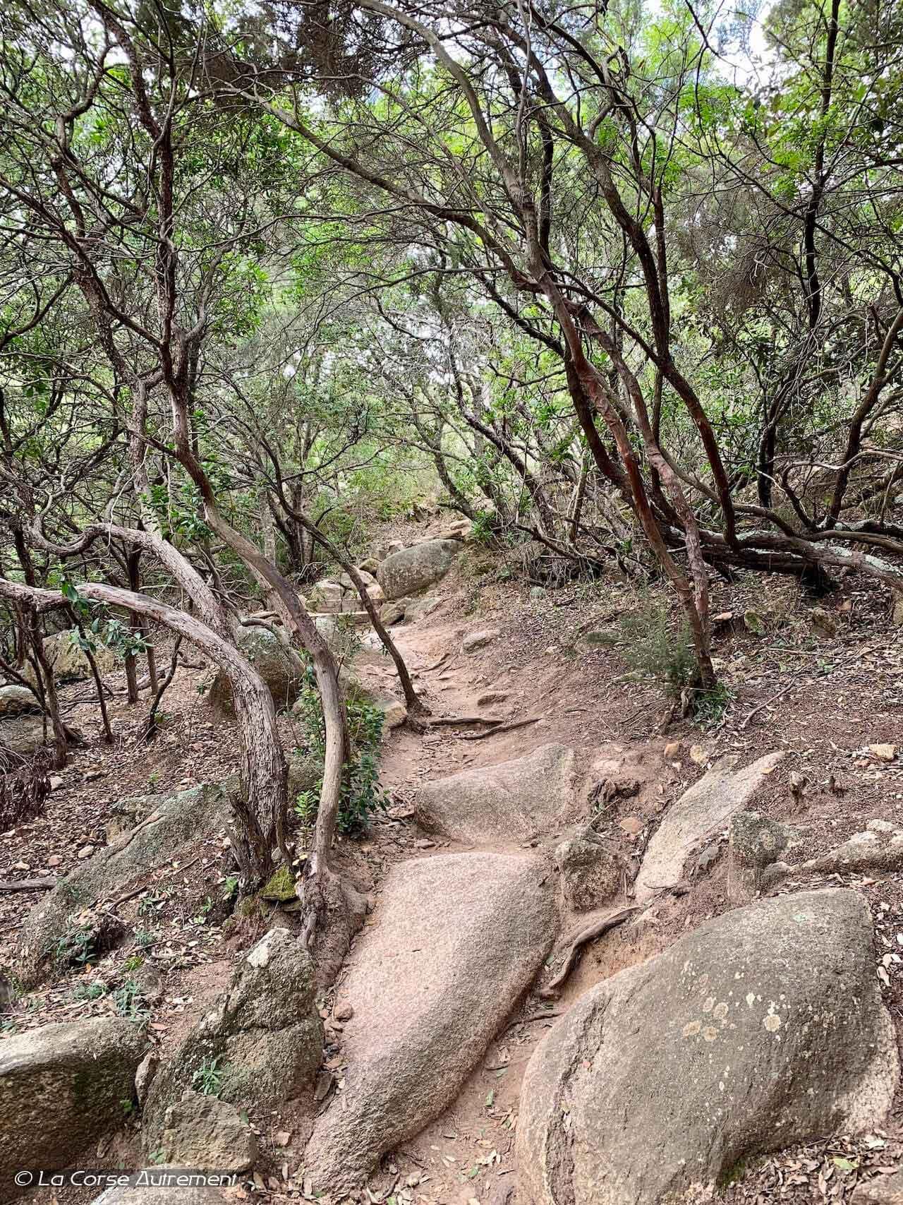 sentier de découverte des Bruzzi