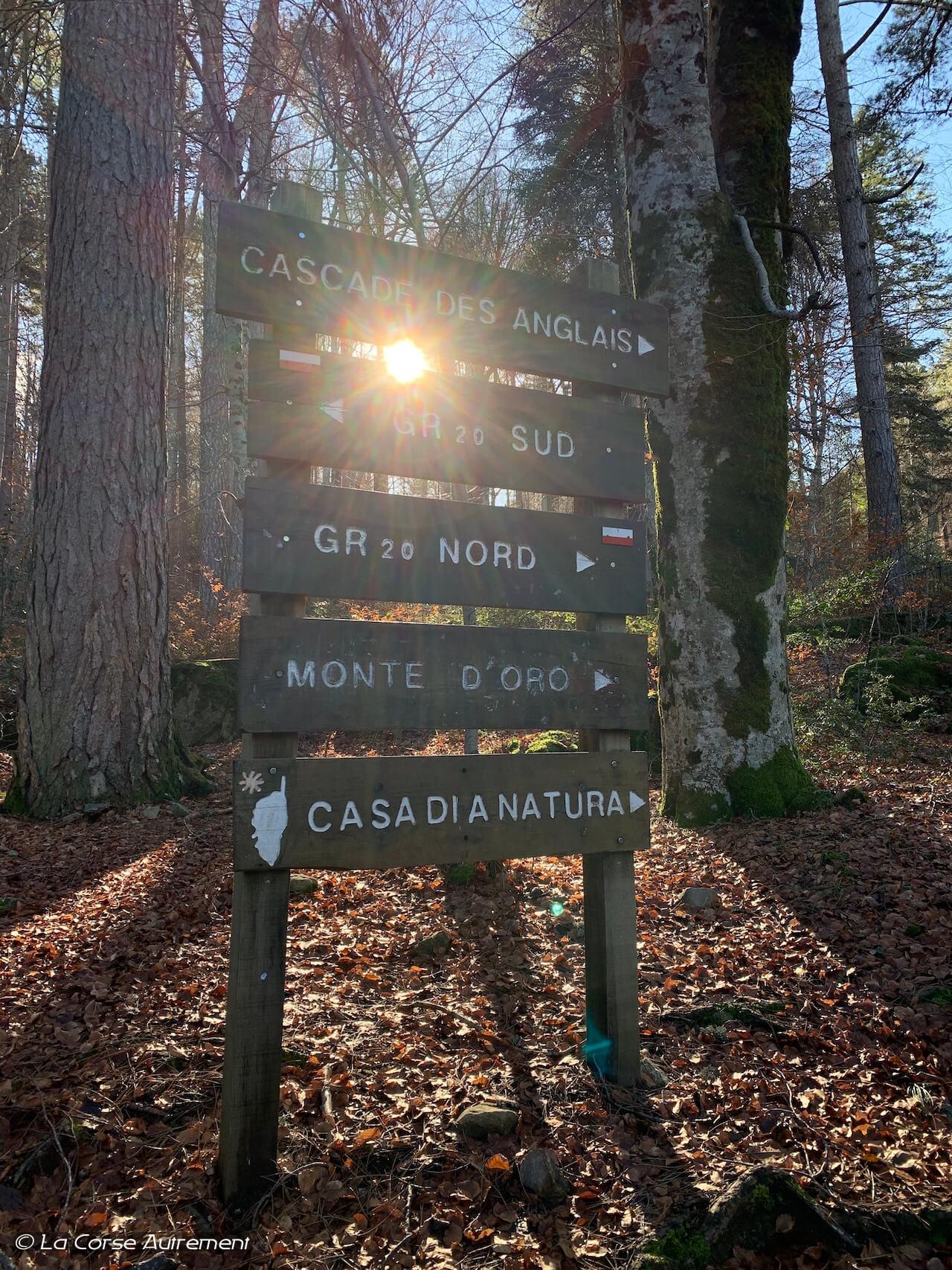 Vizzavona Cascade des Anglais