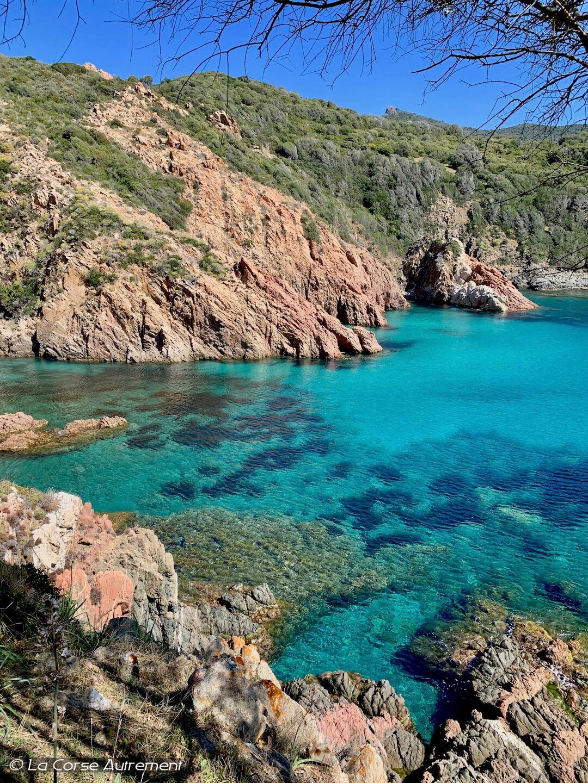 Randonnée du Capo Rosso en Corse