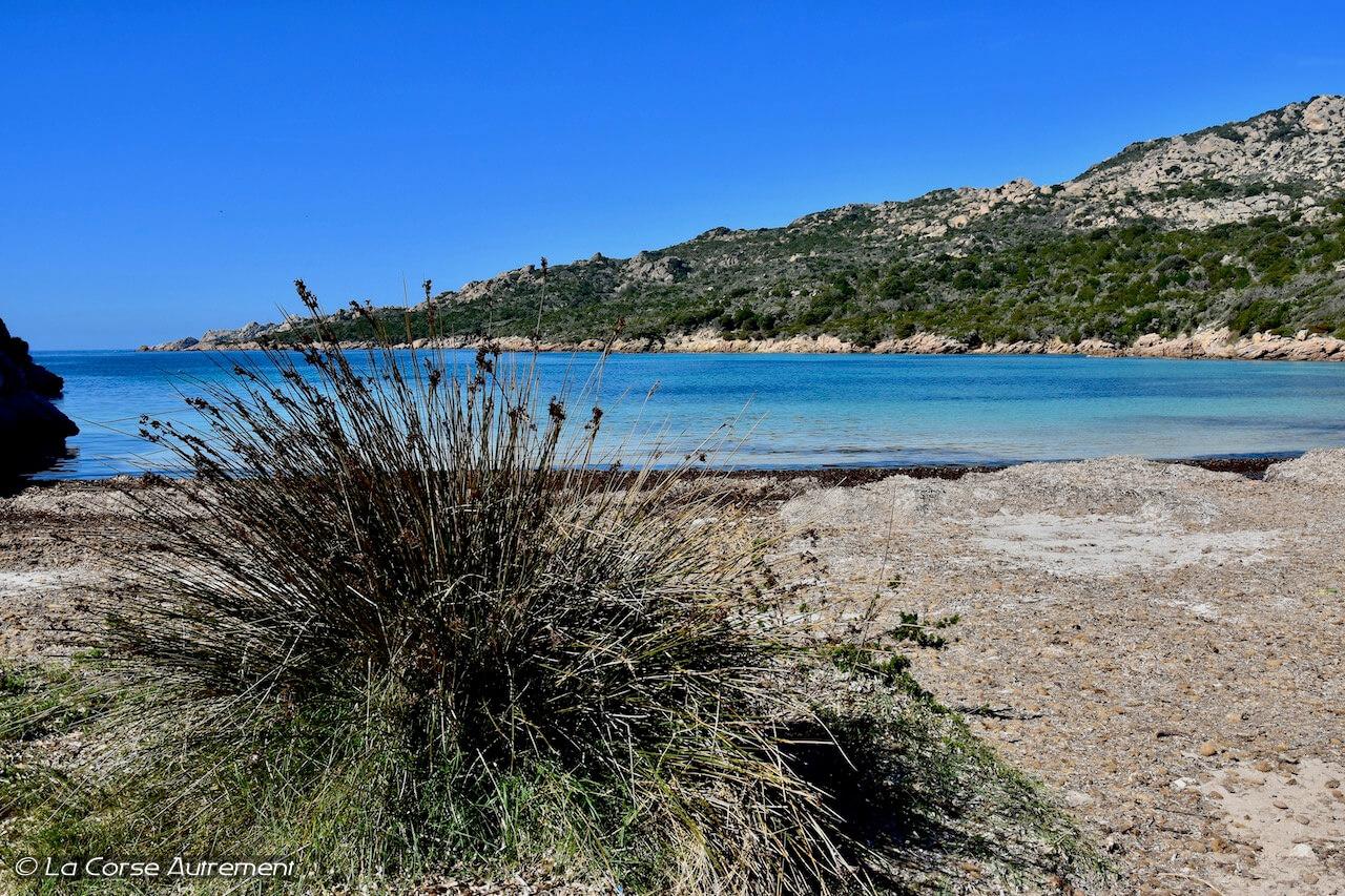 La plage de Paragan, Bonifacio