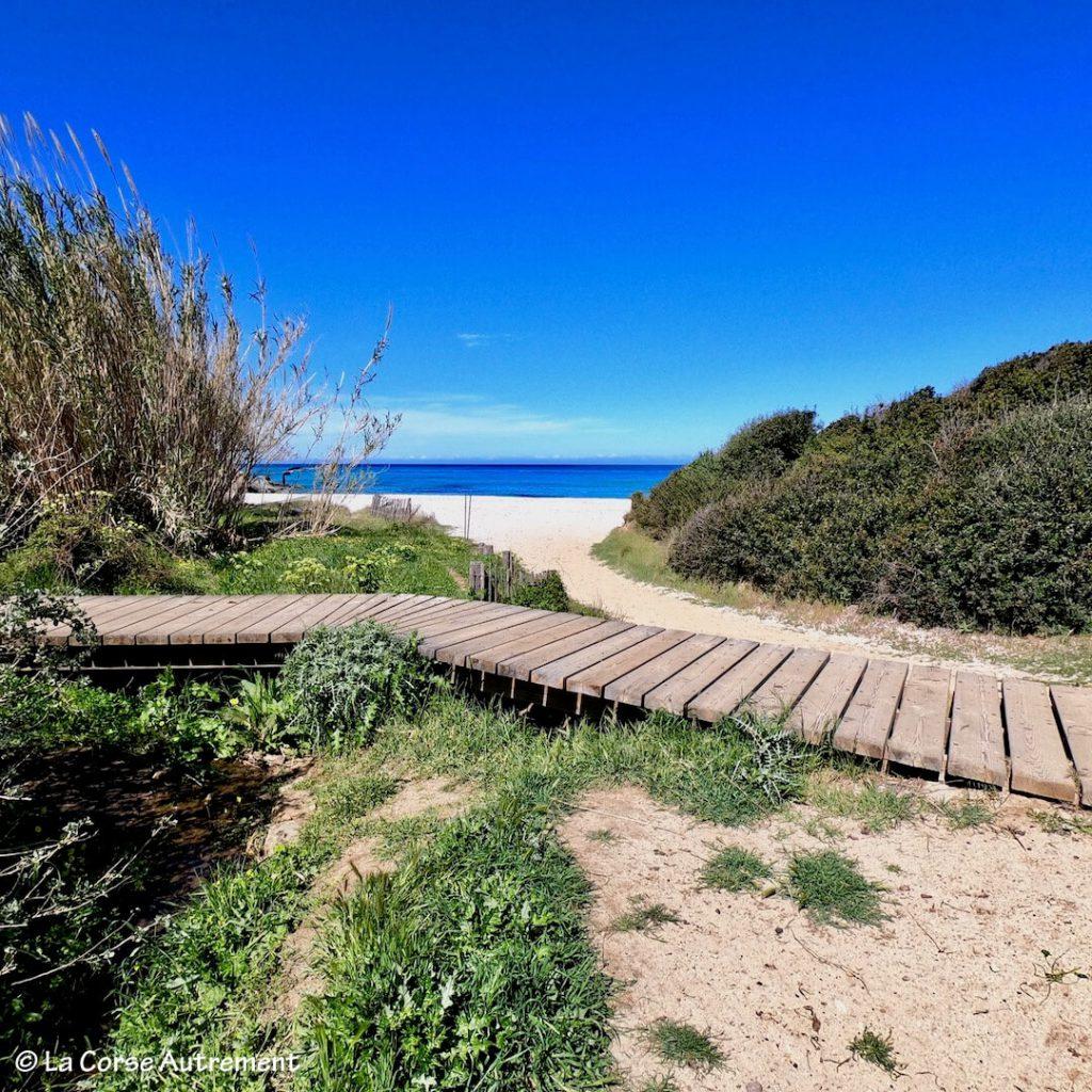 La plage de Bodri