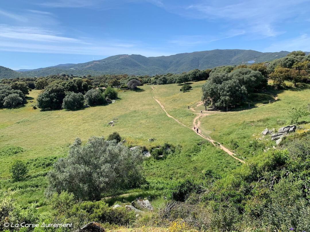Site préhistorique de Filitosa, Corse