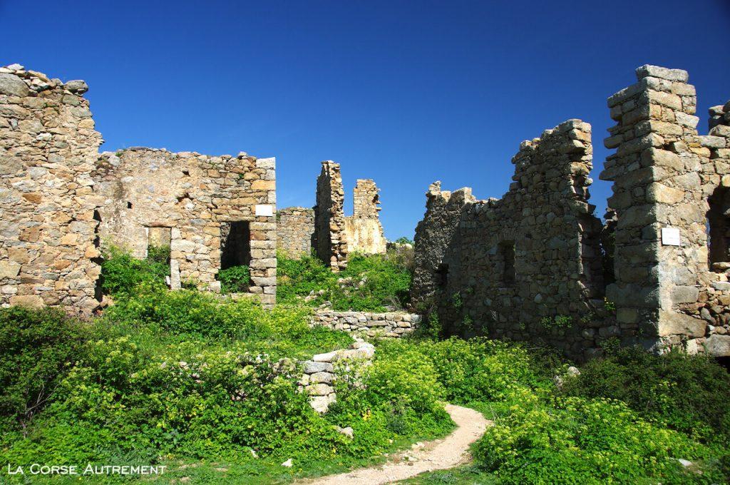Le village d'Occi