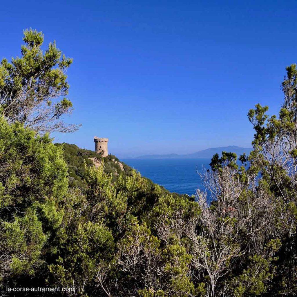 Randonnée vers Capo di Muro