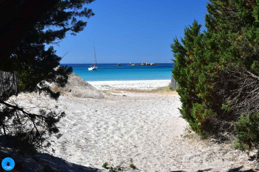 En arrivant sur la plage de Roccapina