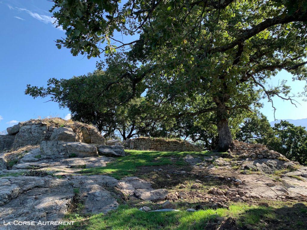 Balade Statue Menhir Tavera et I Casteddi