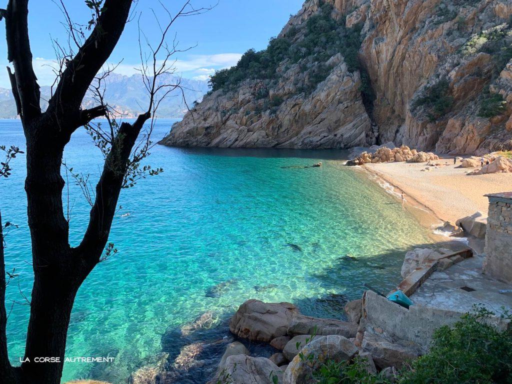 Ficajola, Piana en Corse
